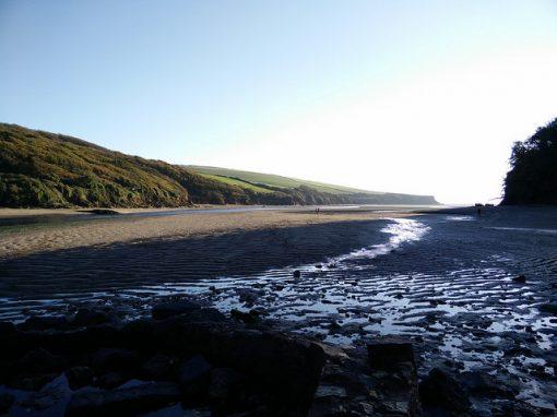 Estuaries Management Plan