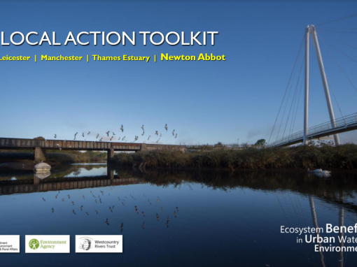 Local Action Project – Newton Abbot